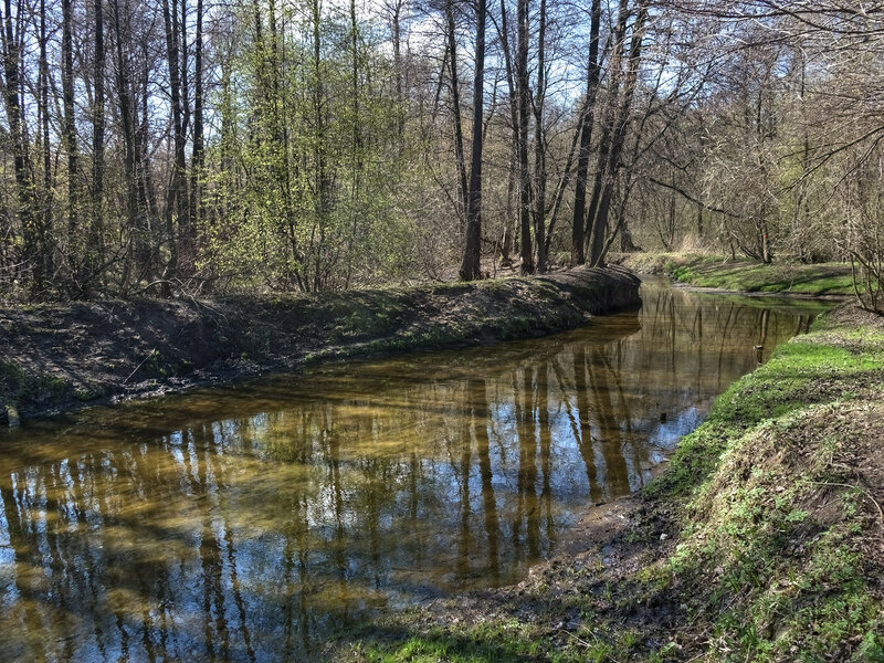 Опять весна на белом свете