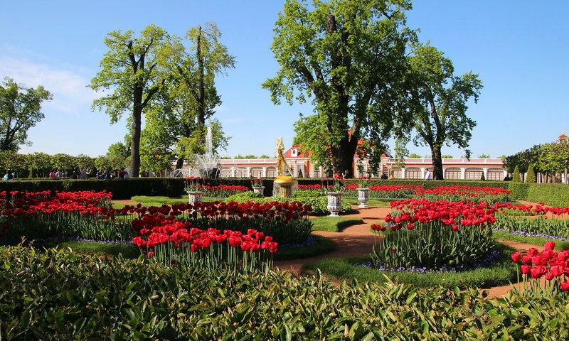 Китайский садик нижний парк Петергофа