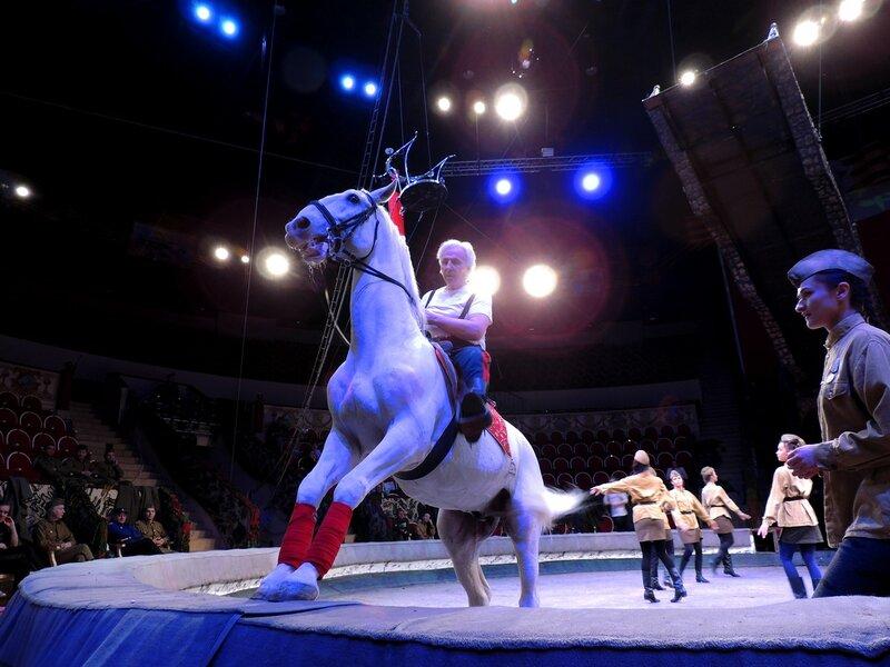 Цирк Чинизелли