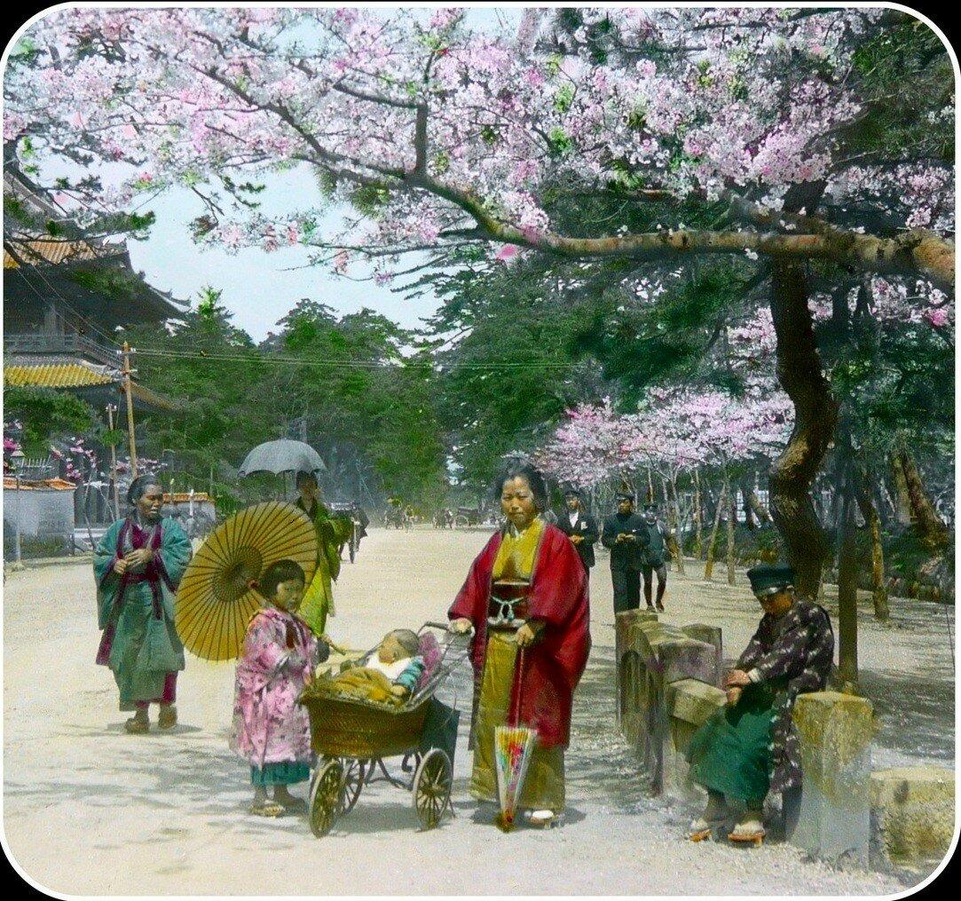 Токио. В парке