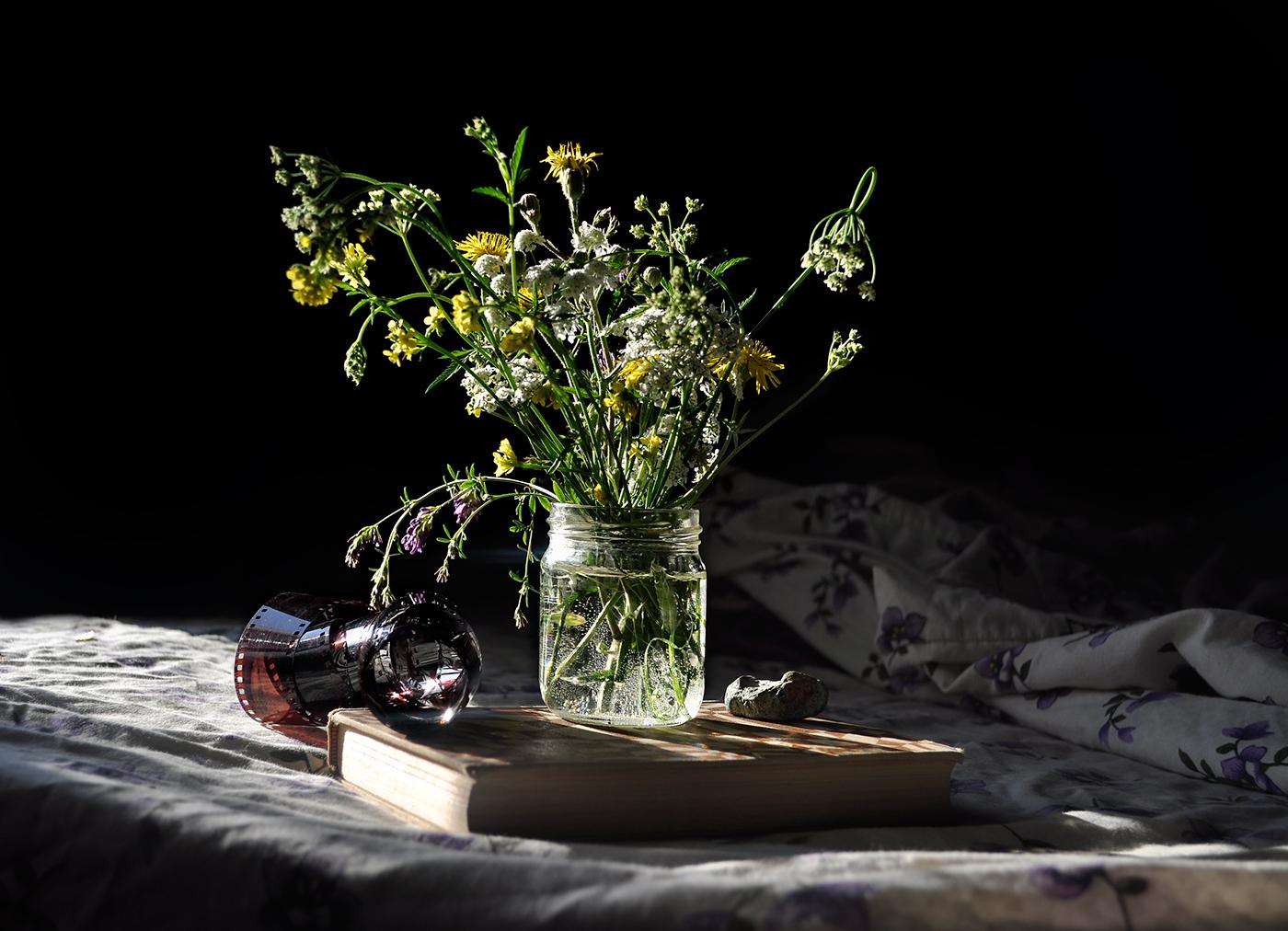 Still Life / Natia Gelantia