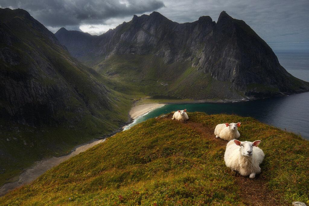 Гора Ryten, Норвегия