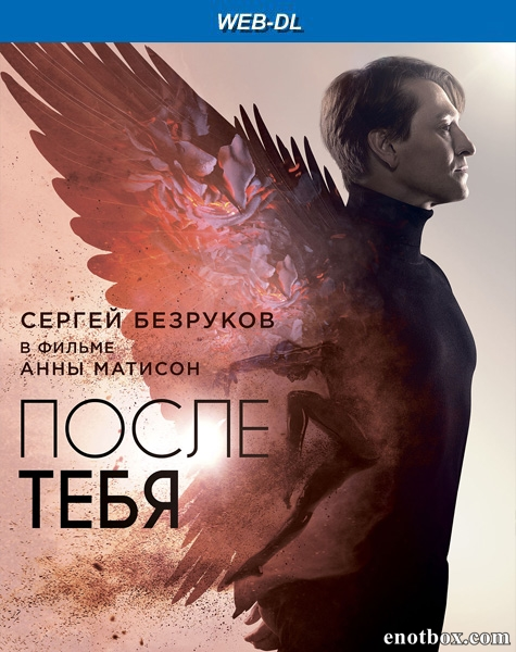 После тебя (2016/WEB-DL/WEB-DLRip)