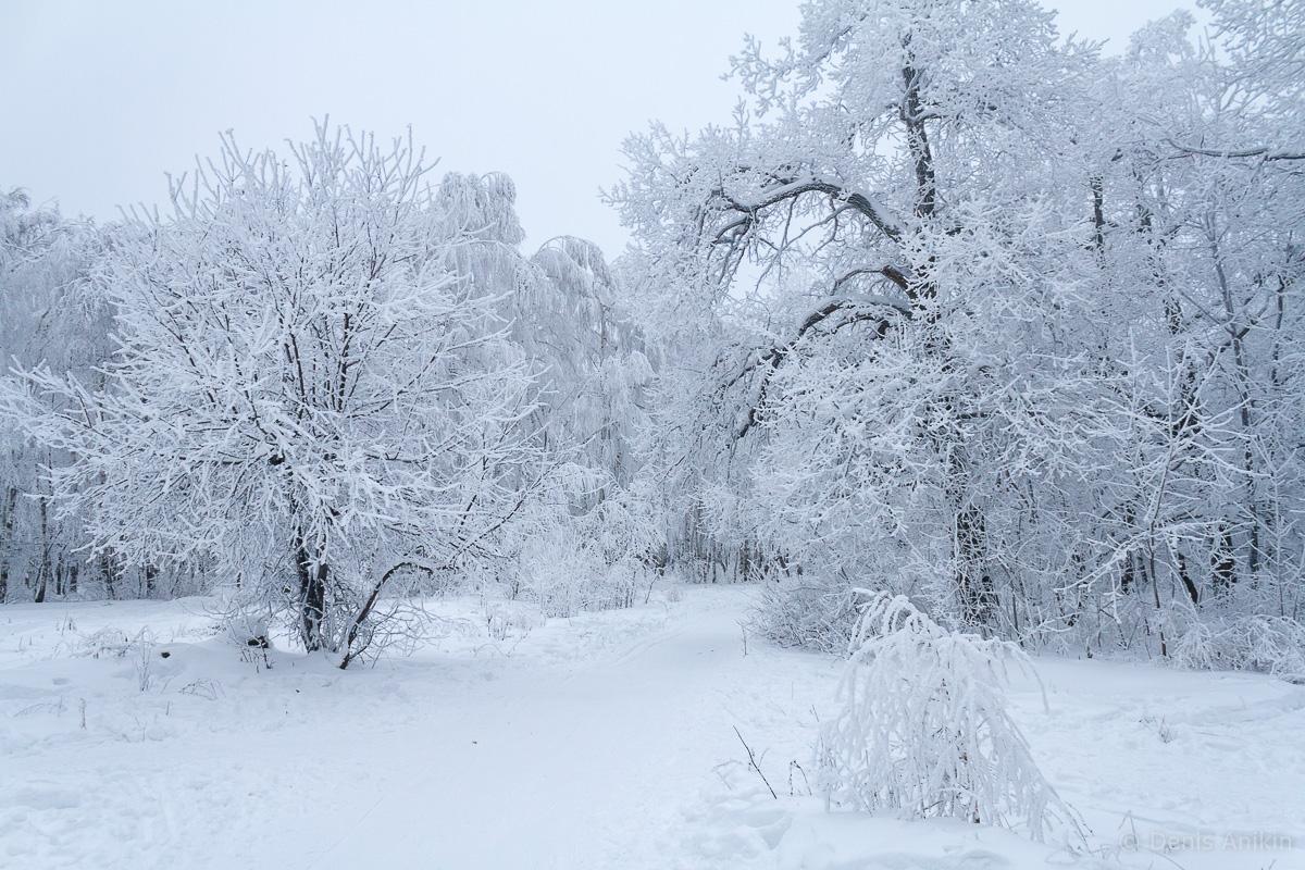 Кумысная поляна зима фото 8
