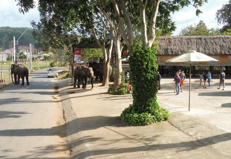 По улице слоны ходили