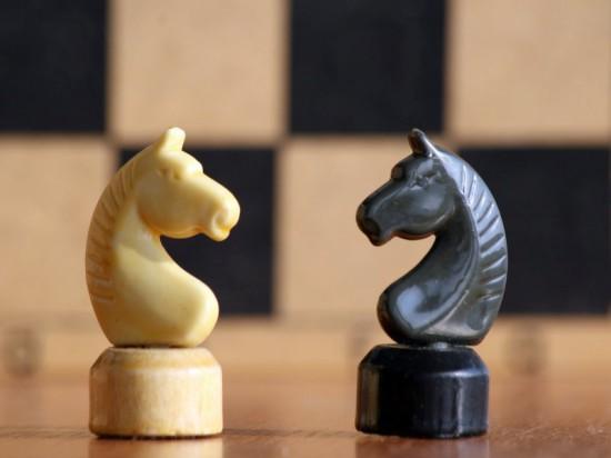 Международный день шахмат. 20 июля. Два коня