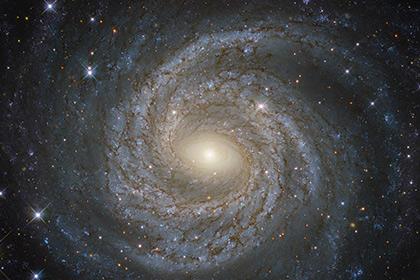 Физики сообщили  о вероятном  открытии 5-той  силы природы
