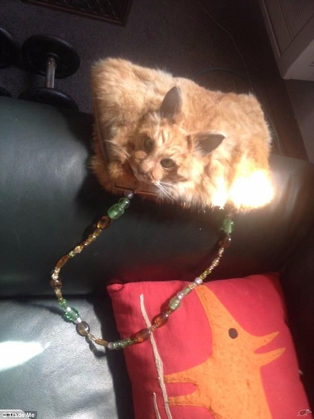 Несмотря на это, многие раскритиковали сумку. Глава организации по защите прав животных Save Animals