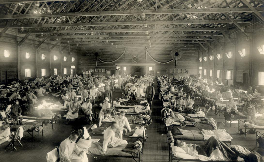 Испанка возникла где-то во время Первой мировой войны и уничтожила 50 миллионов человек по всей план