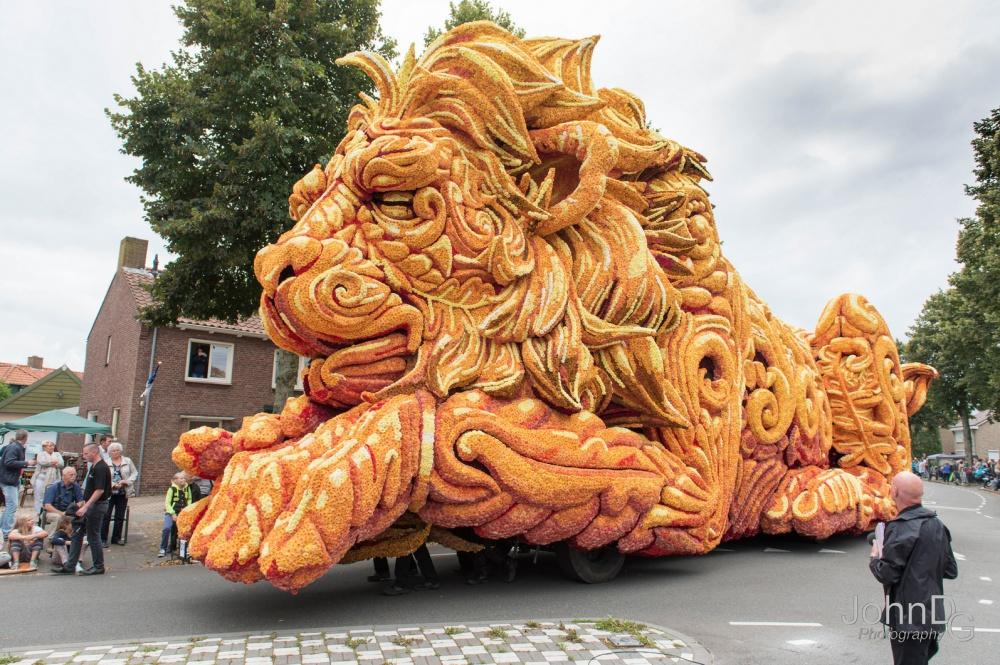 Каждый год вНидерландах проводится самый классный парад цветов вмире. Иэто просто шикарно