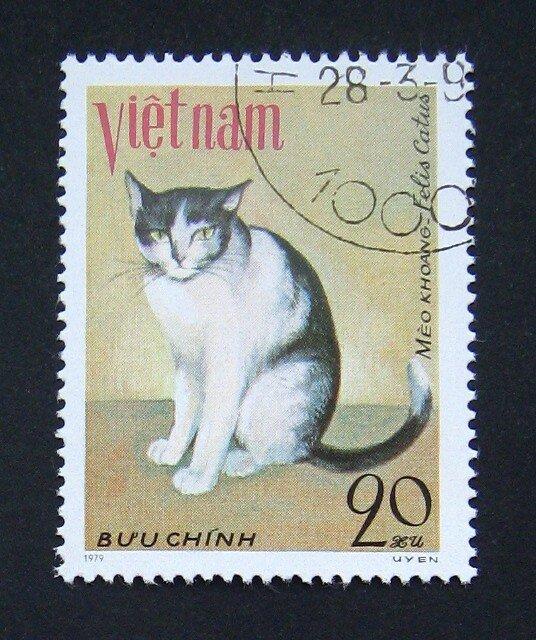 антресолью почтовые открытки кошка шоу-бизнесовая