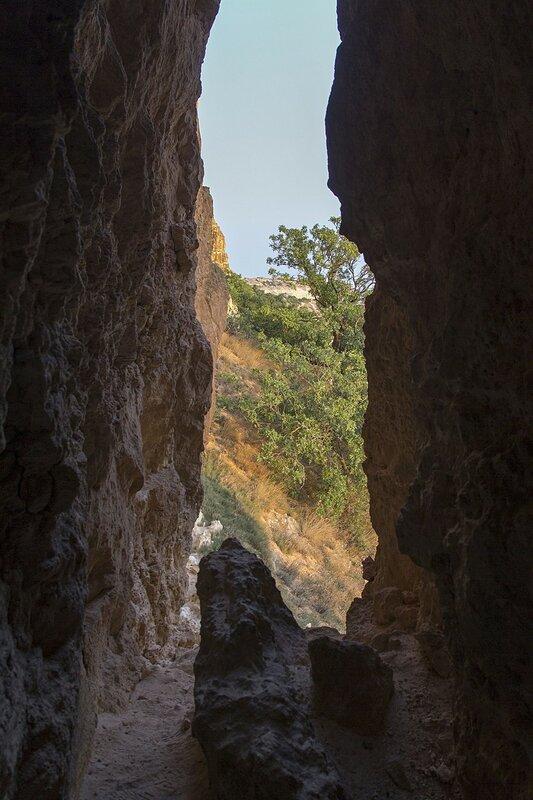 Вид из пещеры-расщелины на скальную стенку в районе мыса Фиолент (Севастополь, Крым)