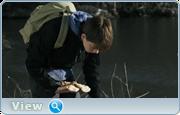 http//img-fotki.yandex.ru/get/30602/40980658.125/0_1369e5_42cc14e4_orig.png