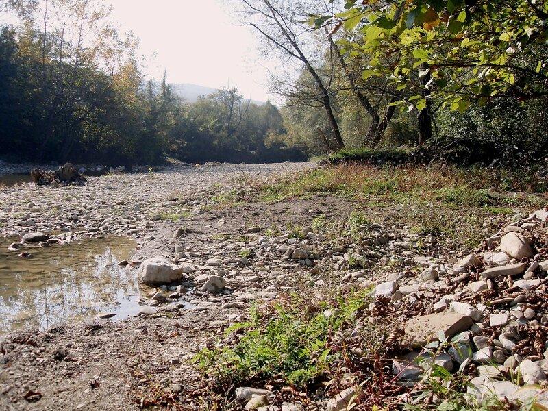 Осень, у реки ... SDC15571.JPG