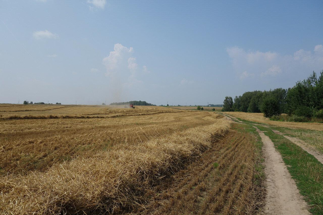 сельхоз-уборка урожая