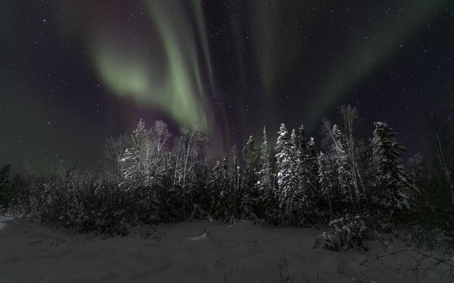 Картинки зимы