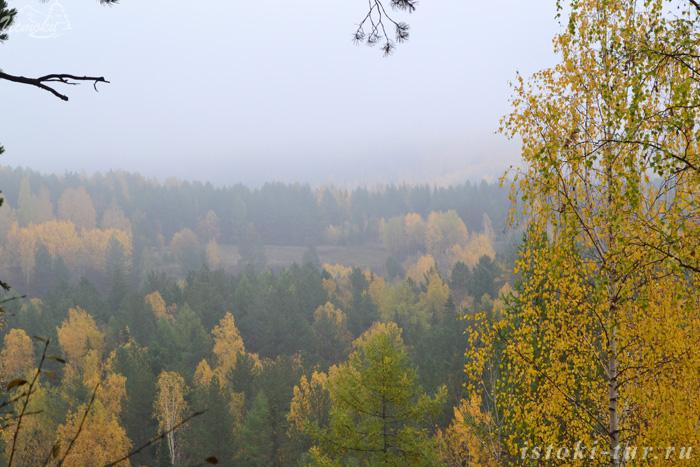 лесные_дали_lesnye_dali