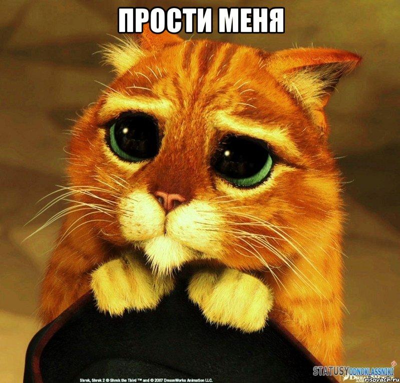 Прости меня! Кот с глубокими глазами