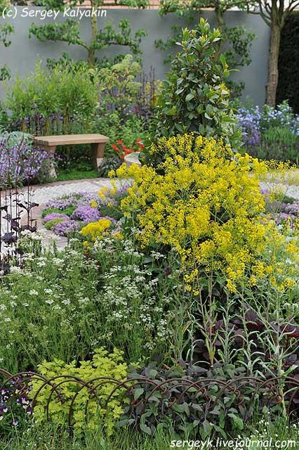 A modern Apothecary Garden (22).jpg