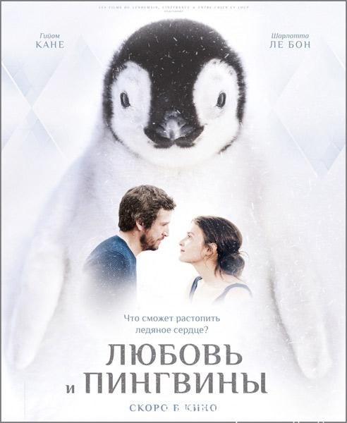 Любовь и пингвины / Le secret des banquises (2016/WEB-DL/WEB-DLRip)
