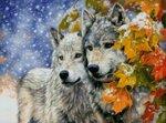 снежные волки.jpg