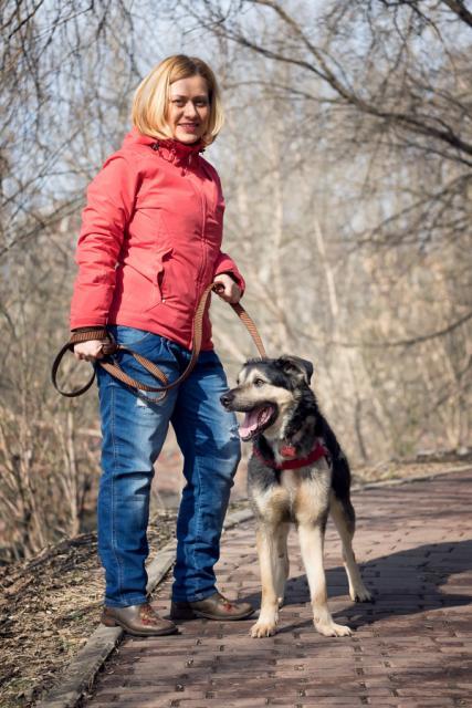 Джой собака из приюта догпорта