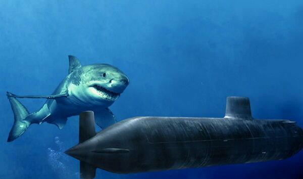 Очень страшные гигантские животные, населявшие Землю в разные времена