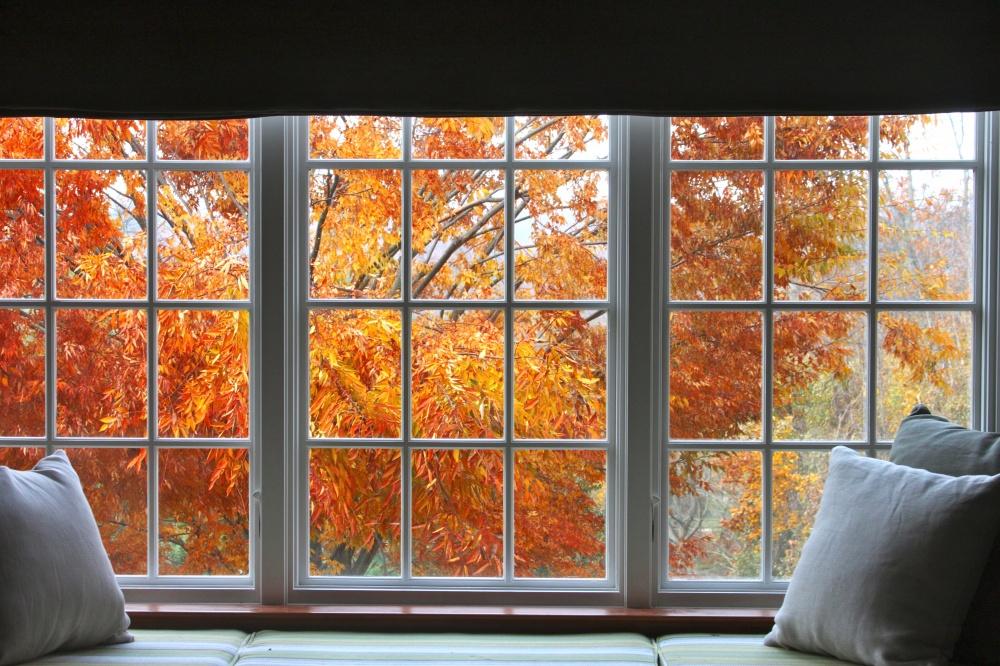 © automatedtendencies   Хочется прыгнуть вкучу осенних листьев