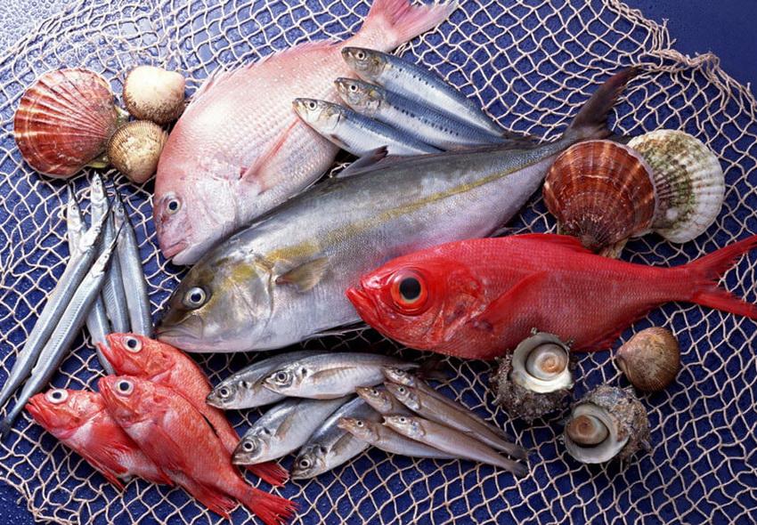 Морепродукты— ключ кпродолжительной жизни: как этого добиться, рассказали ученые