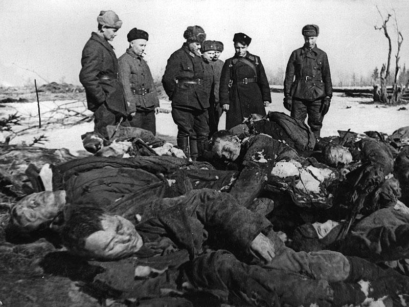 Трупы замученных гитлеровцами пленных красноармейцев. Окрестности города Кириши.jpg