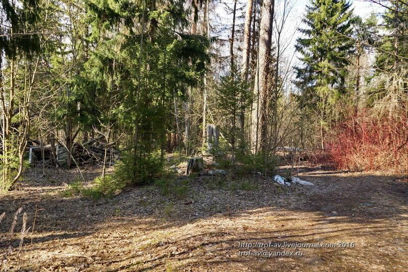 Заброшенный пионерский лагерь Елочка