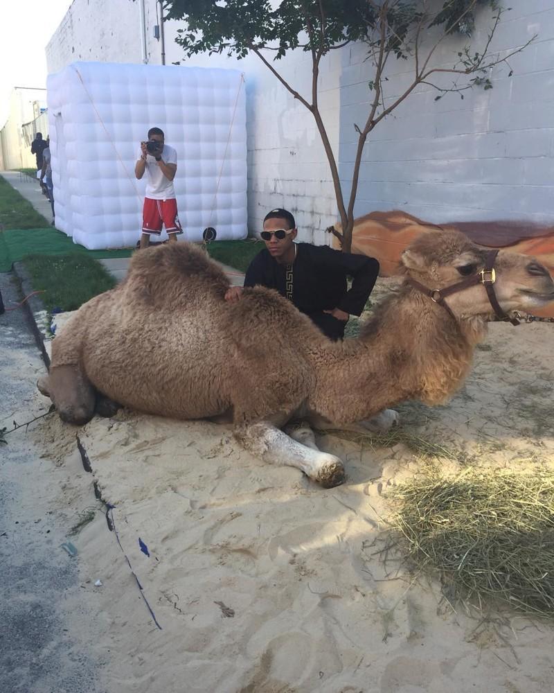 По словам Шулер, она давно хотела поехать со своим единственным сыном в Дубай, но вместо этого решил