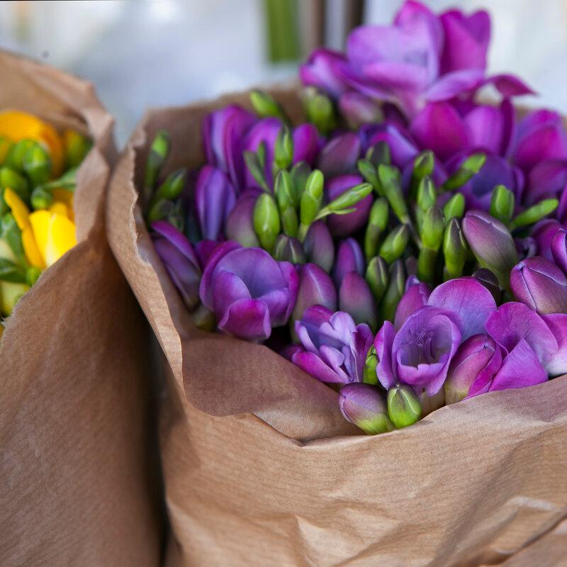 Beautiful freesia flowers bouquet