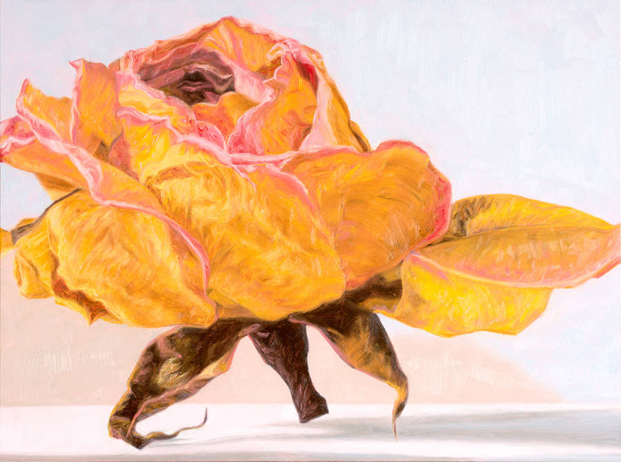 Flowers Paintings by Laureen Marchand
