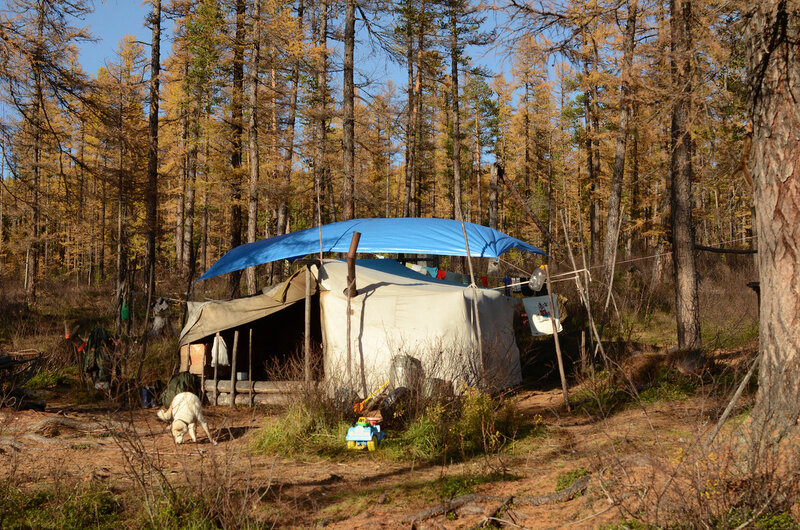 палатка оленевода.jpg