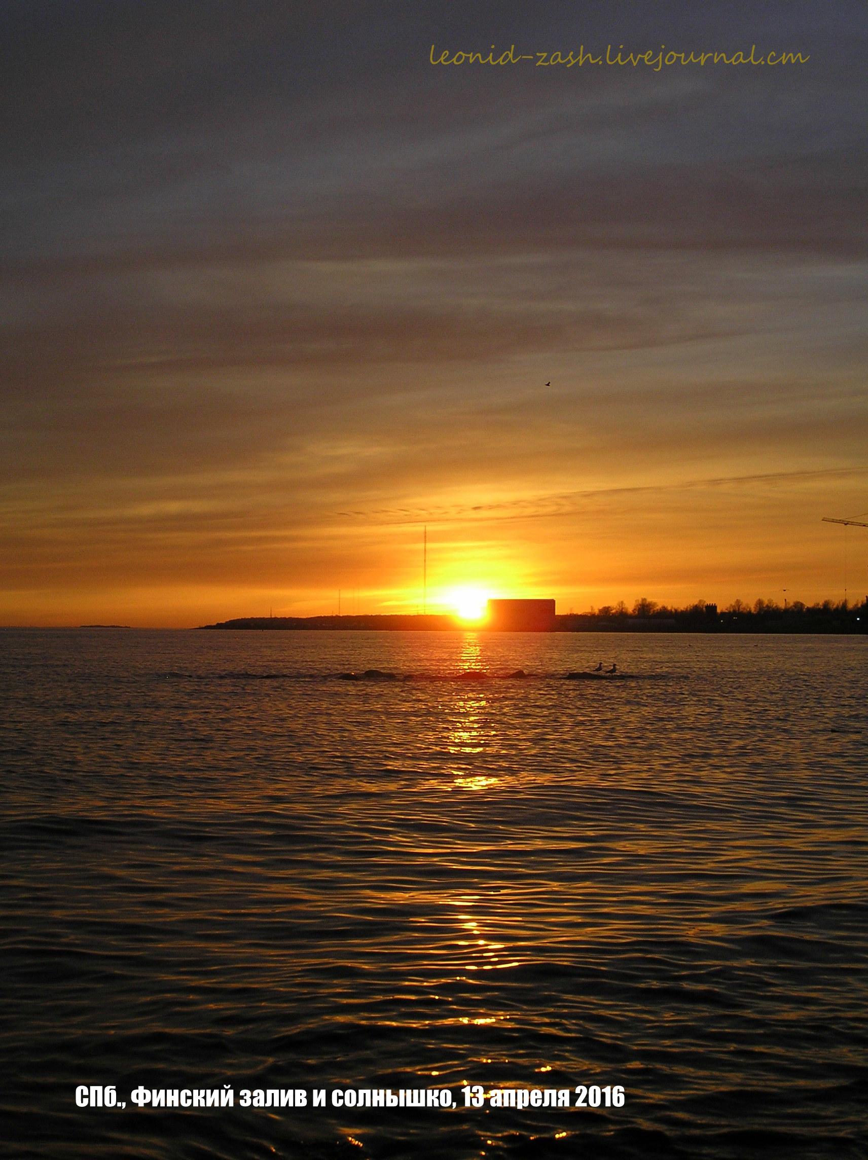 Финский залив 62.JPG