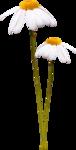 JazzminDesigns_Little Gardenflowers.png