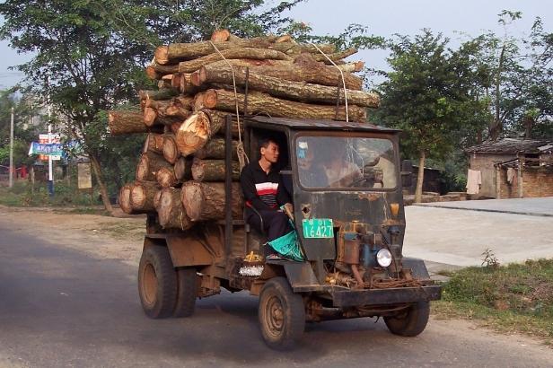 Hainan logging truck.jpg