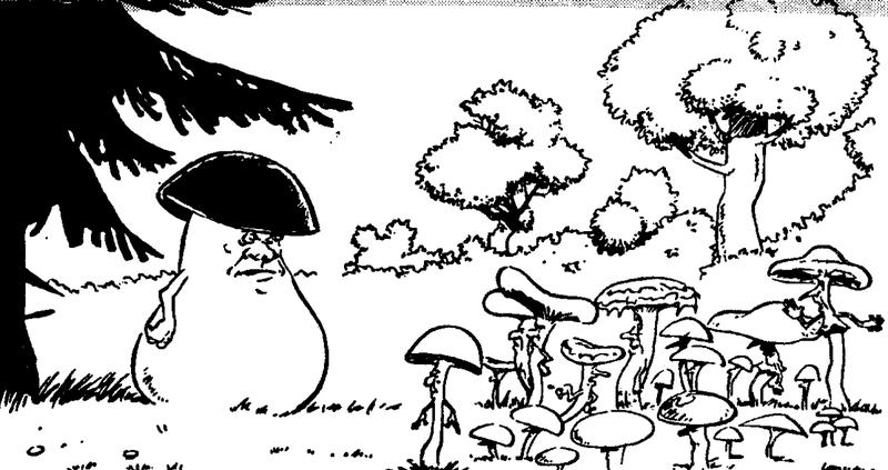 Белый гриб ви даль.