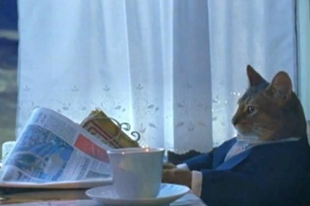 youtube.com Иещё про котиков: Еслибы коты писали СМС 30котов, постигших искусство «Сон-Фу» Помат