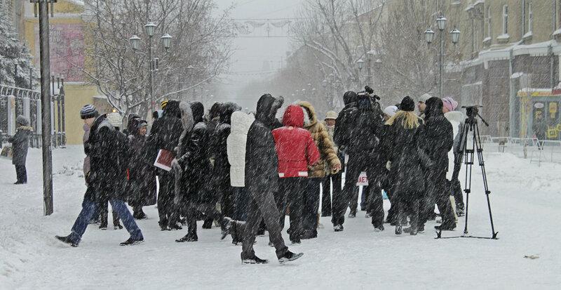 Митинг в поддержку бездомных животных, Саратов, 25 февраля 2012 года