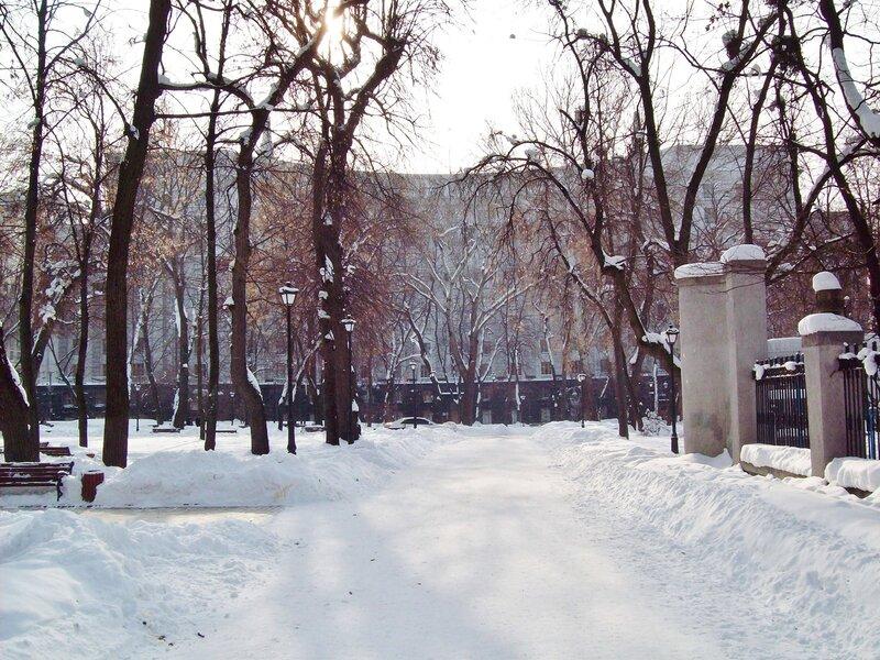 Аллея Мариинского парка перед Кабмином