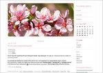 Дизайн для ЖЖ: Розовые цветы (S2). Дизайны для livejournal. Дизайны для Живого журнала. Оформление ЖЖ. Бесплатные стили. Авторские дизайны для ЖЖ