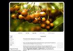 Дизайн для ЖЖ: Мокрая осень (S2). Дизайны для livejournal. Дизайны для Живого журнала. Оформление ЖЖ. Бесплатные стили. Авторские дизайны для ЖЖ