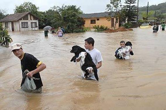 Как люди спасают животных 0 12cff0 9409b151 orig