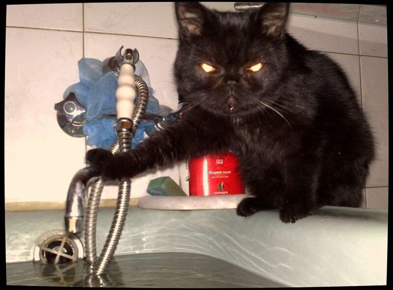 Я в ванной фото 29 фотография