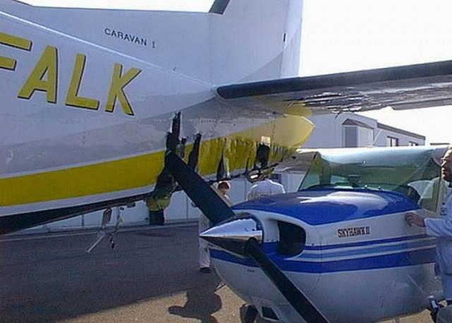 Столкновения между птицами и самолетами представляют собой большую опасность для авиации