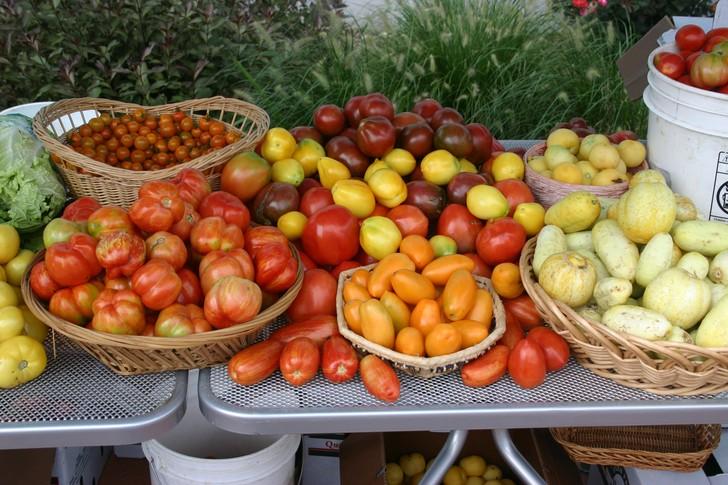 1. Источник витаминов и пищевых волокон. В помидорах много витаминов A, C, K, B6, а также фолиевой к