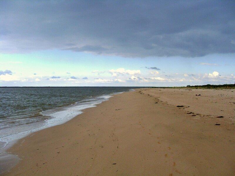 У моря ... SDC14875.JPG