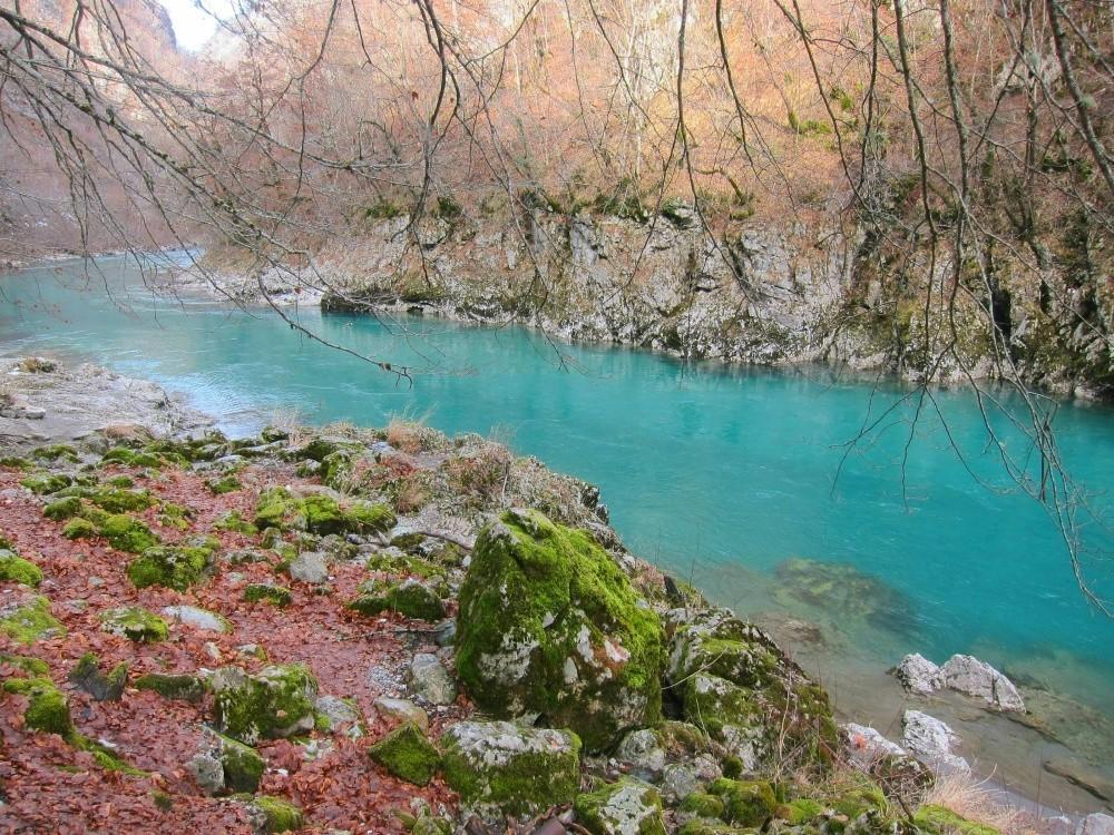 Лазурные воды горной реки Тара. © SvetaKhovrina